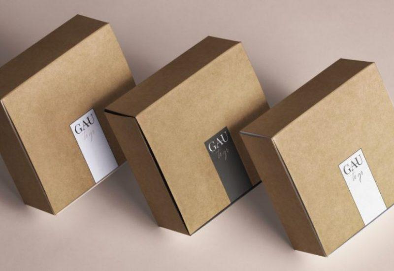 GAU Event Box (2) (1)